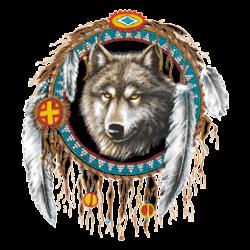 T Shirt enfant dreamcatcher wolf