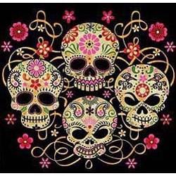 Sweat capuche zippé femme the four skulls