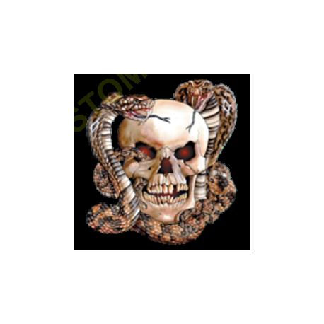 T shirt  skull snake