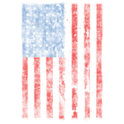 T shirt biker american flag