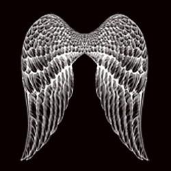 T shirt biker ailes d'ange