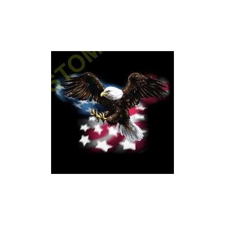 T shirt biker american eagle