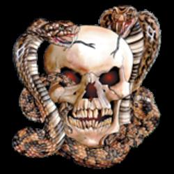 Sweat biker skull snake