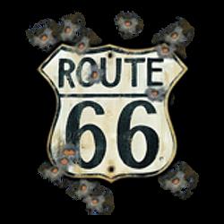 Sweat biker old road 66