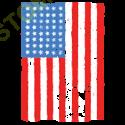 Sweat biker american flag