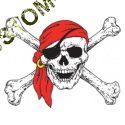 T Shirt enfant pirate