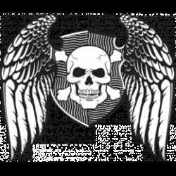 T Shirt enfant skull angel