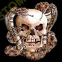 Sweat zippé biker skull snake