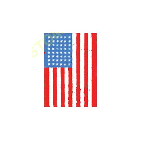 Sweat zippé biker american flag