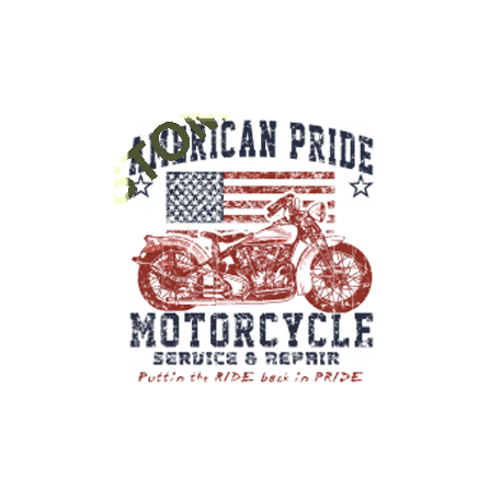Sweat zippé biker american pride bike