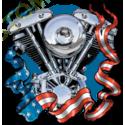 Sweat capuche biker moteur evo