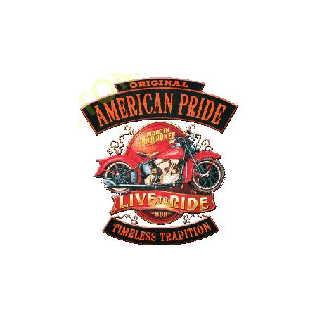 Sweat capuche biker american pride