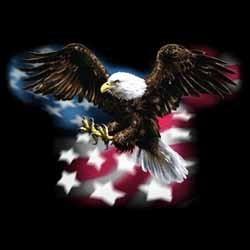 Sweat capuche biker american eagle