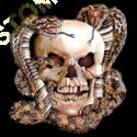 Sweat capuche avec zip skull snake