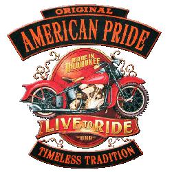 Sweat capuche avec zip american pride
