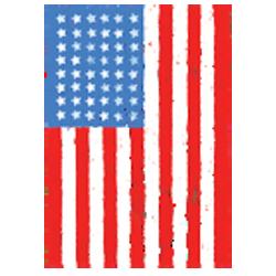 Sweat capuche avec zip american flag