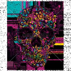 Sweat zippé Femme flower skull butterflies