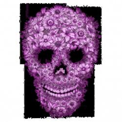 Sweat capuche zippé femme skull flowers